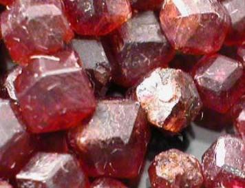Red Garnet January